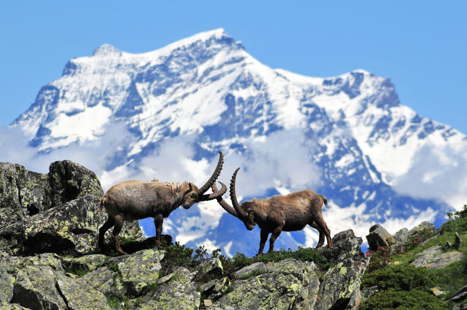 Località Sciistiche low cost Val D'Aosta